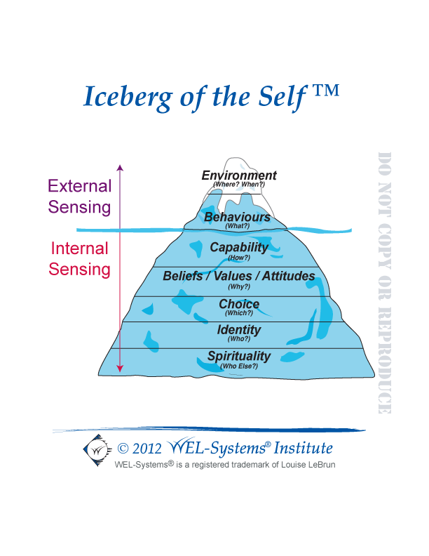 WEL-Systems - Iceberg of the Self