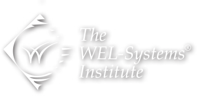 WEL-Systems Logo - transparent
